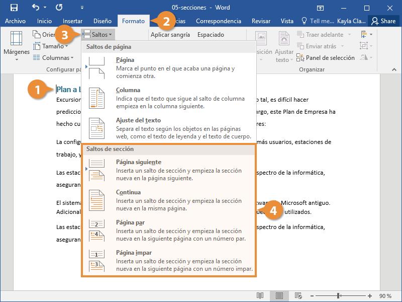Insertar un Salto de Sección en un Documento de Word.