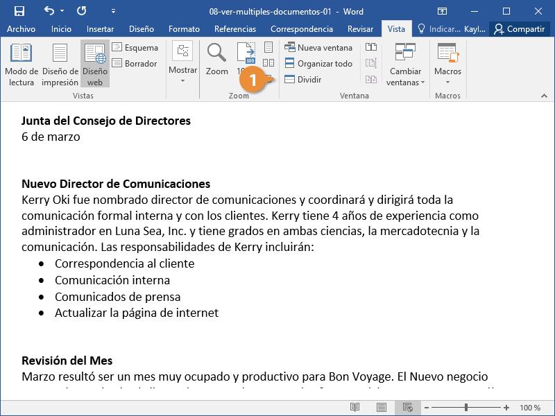 Ver Múltiples Documentos