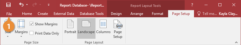 Preview a Report