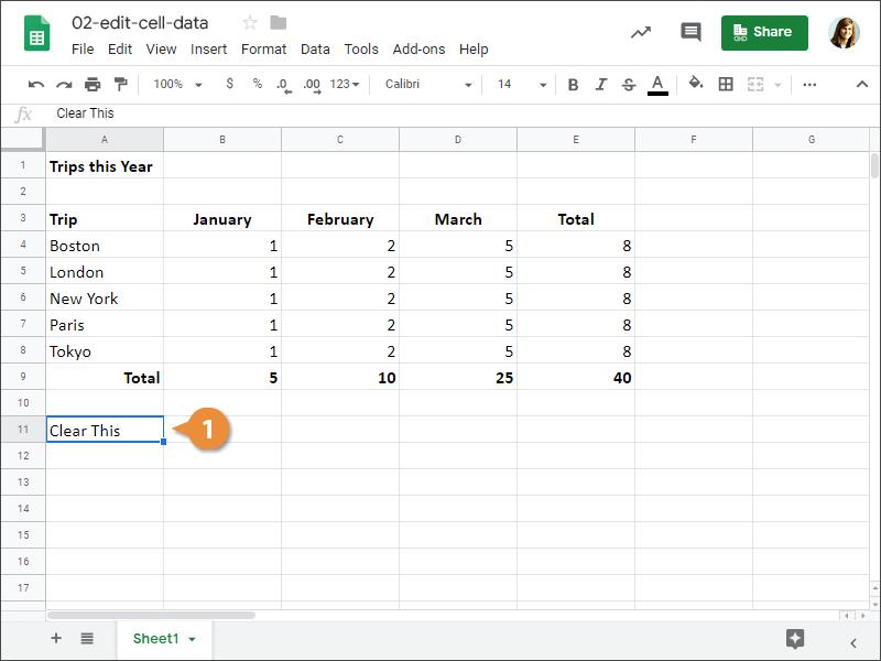 Edit Cell Data