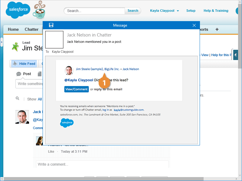 View Records from a Chatter Email