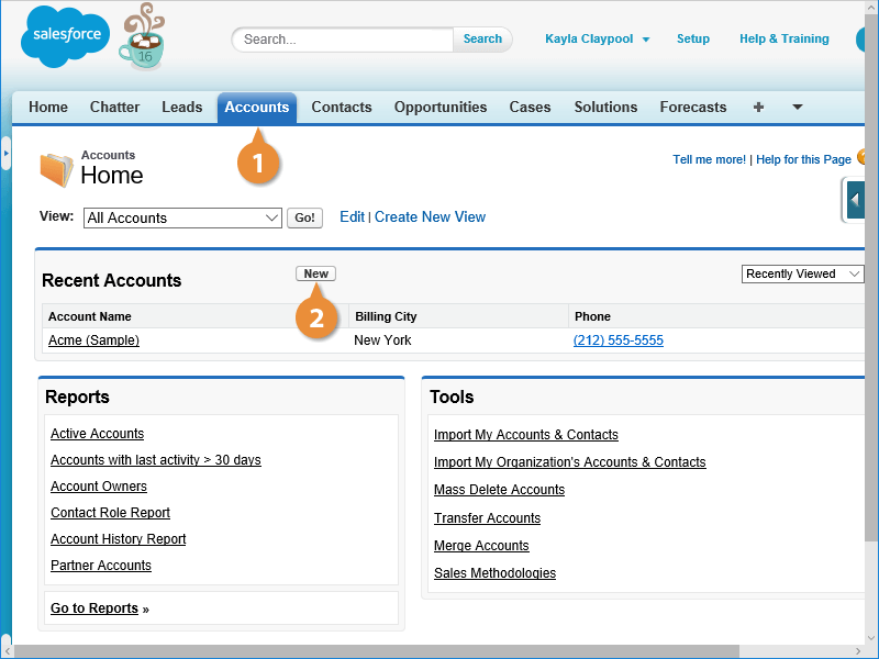 Create Accounts and Contacts in Salesforce