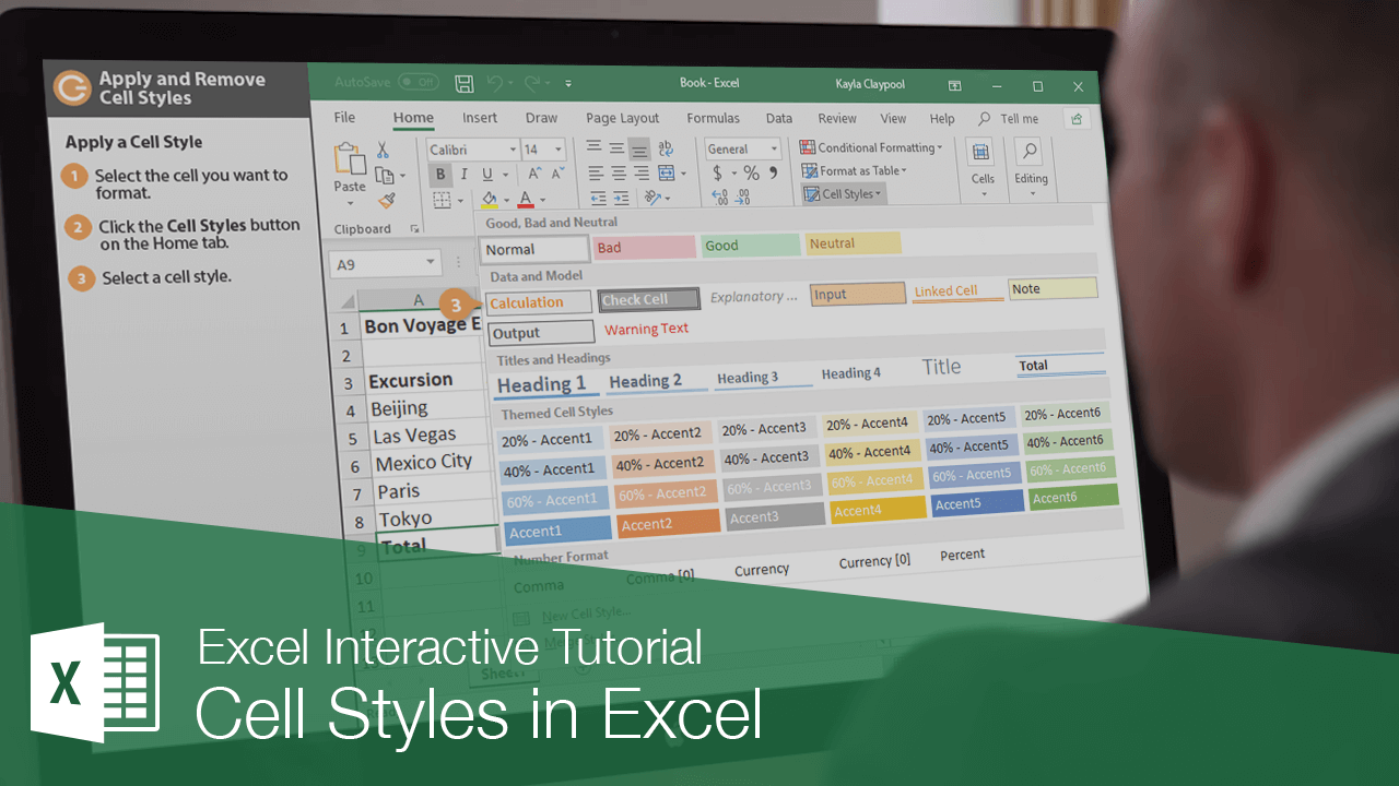 Cell Styles in Excel