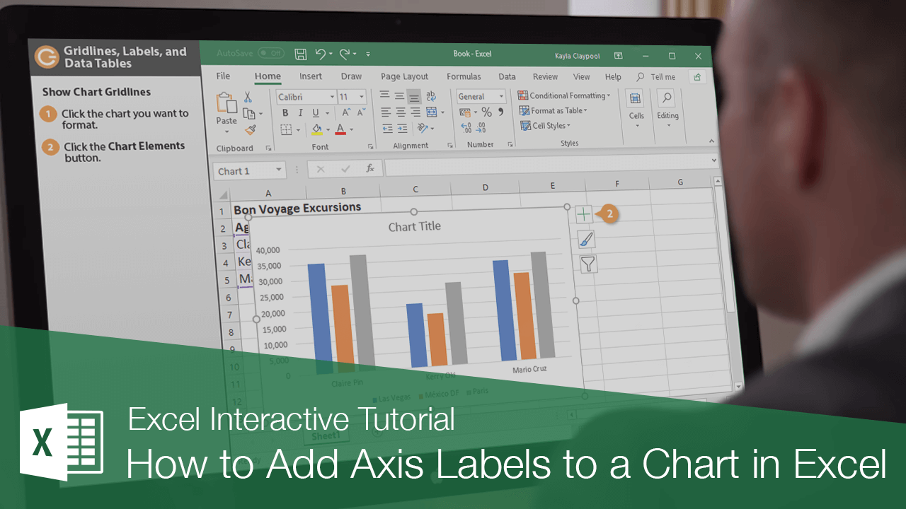 How to Add Axis Labels to a Chart in Excel
