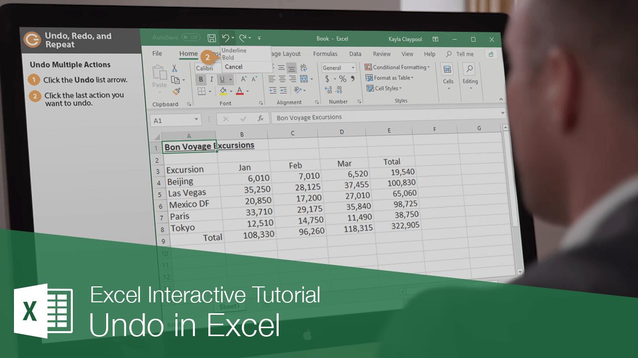 Undo in Excel