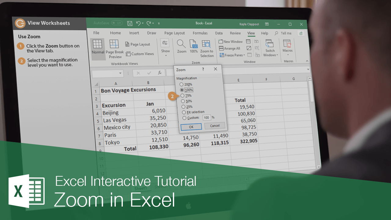 Zoom in Excel