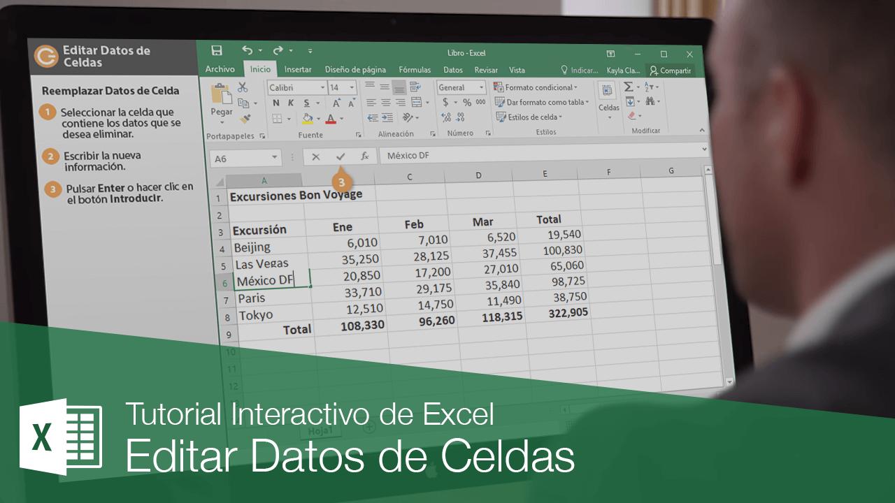 Editar Datos de Celdas